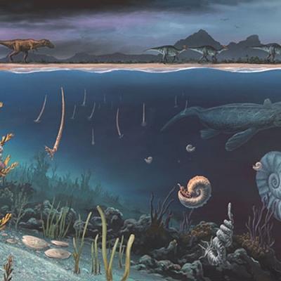 1323a Cretaceous