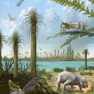 1203 Triassic of Australia